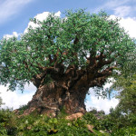 Tree of Life in Animal Kingdom Loses Limb