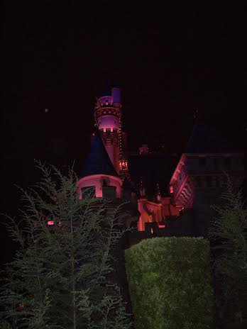 disneyland castle nighttime tour