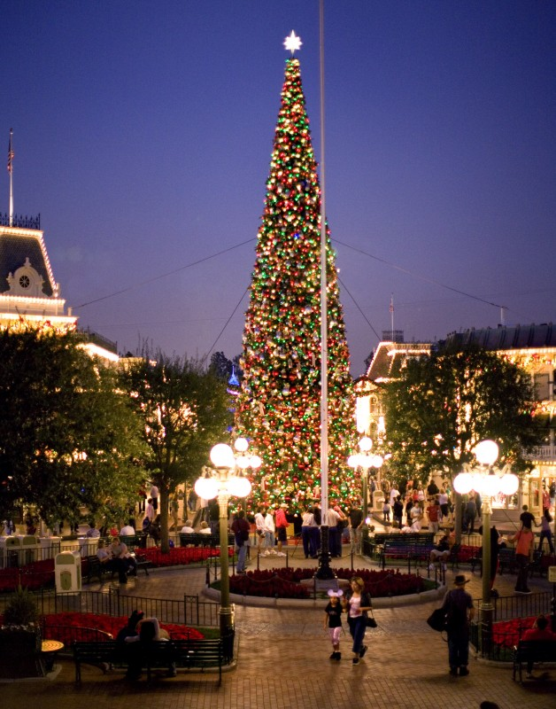 disneyland christmas tree main street