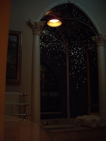 disneyland dream suite bathroom ceiling