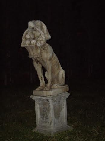haunted mansion graveyard dog