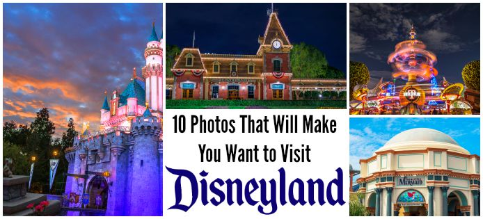 photos that will make you want to visit disneyland