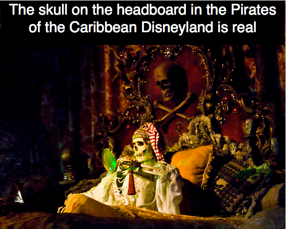the skull on the headboard in the pirates of the caribbean disneyland is real