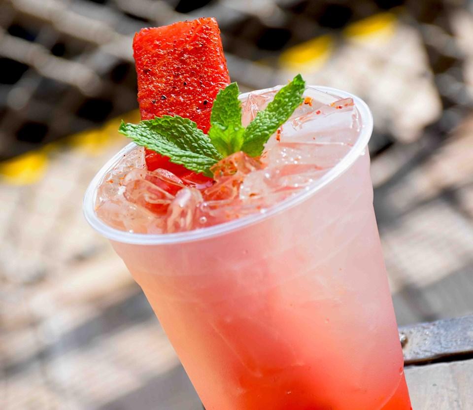Watermelon Mint Julep- Summer Disneyland